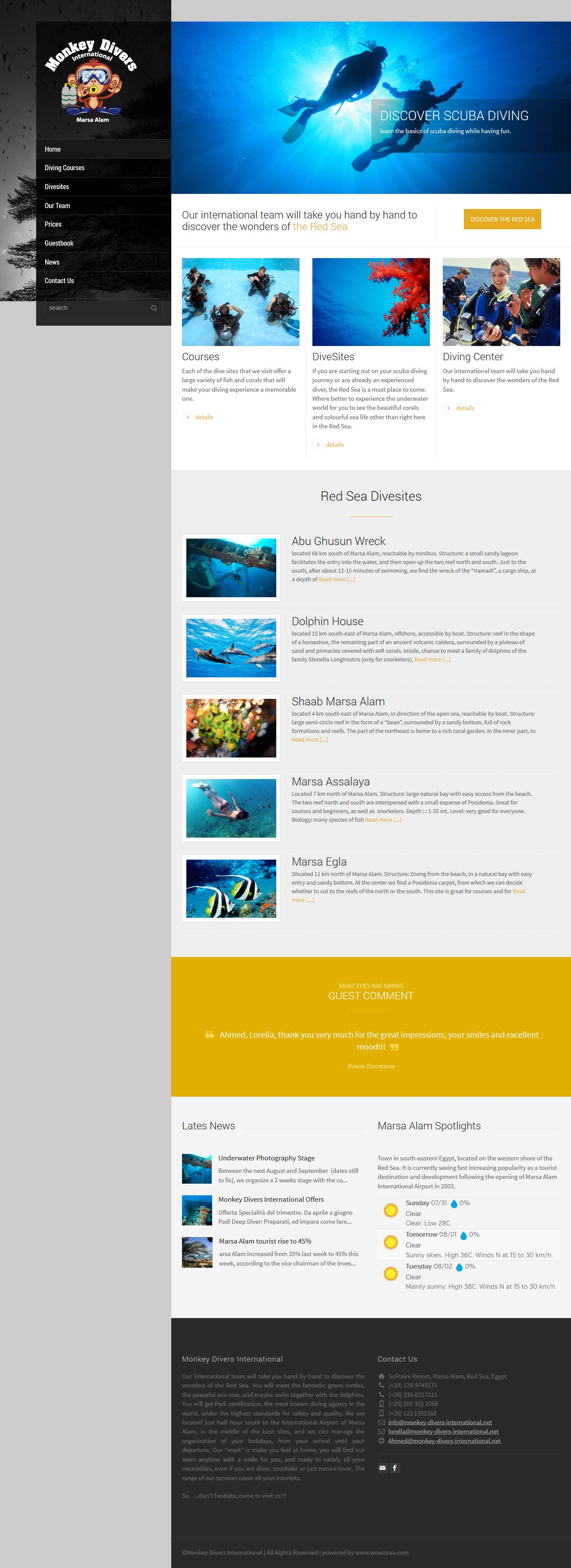 monkey-divers web design