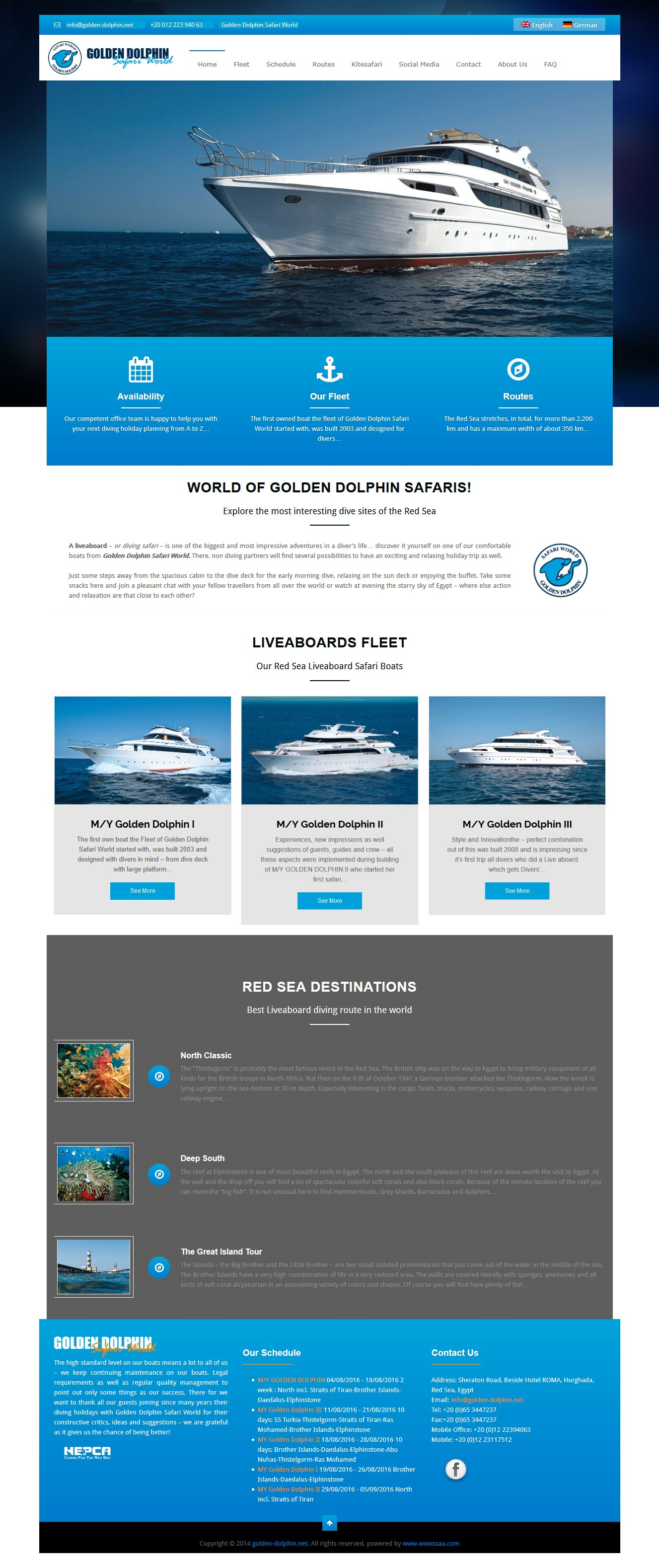 golden dolphin web design